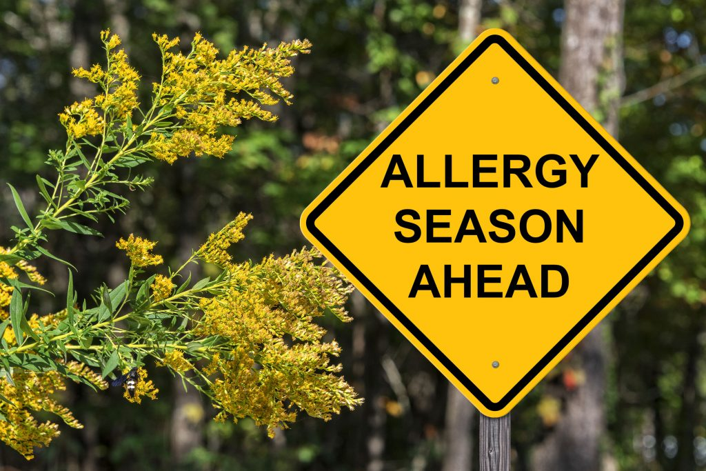 Can Acupuncture Help with Seasonal Allergies?